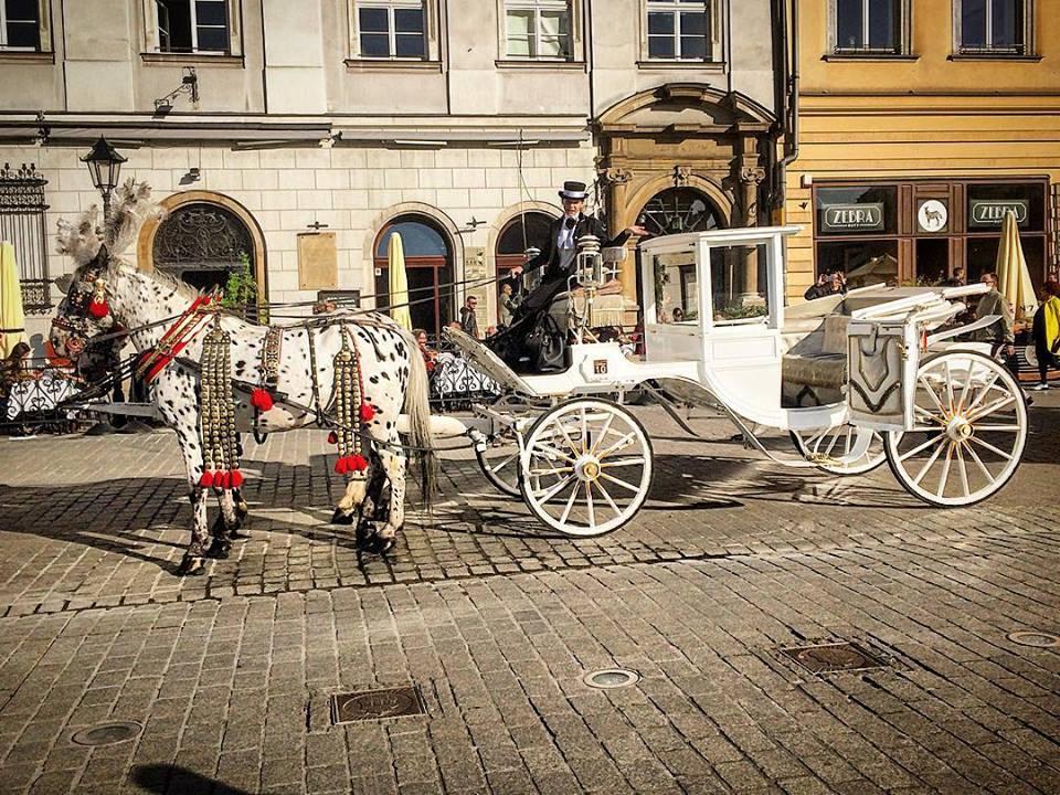 putovanje nova godina 2021, nova godina 2021 autobusom, nova godina 2021 aranzmani, putovanje nova godina 2021, aranzmani novogodisnje putovanje 2021 krakov poljska